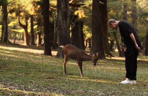 ENDRE AALRUST – Dear Deer